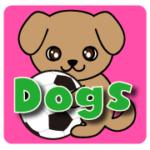 海外サッカー ペット サッカー選手  LOVE 犬